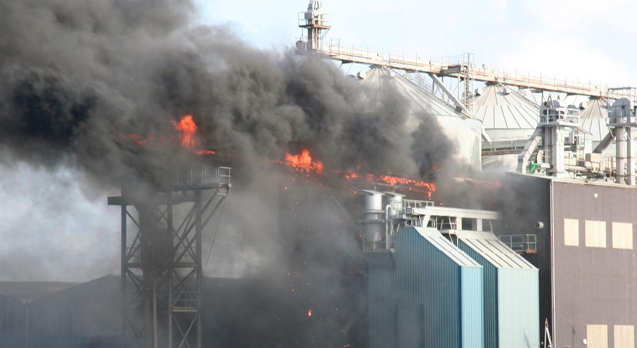 泉佐野 工場 アルバイト